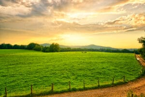 Farmland Sunset - Agribusiness Recruiting - Agricultural Appointments