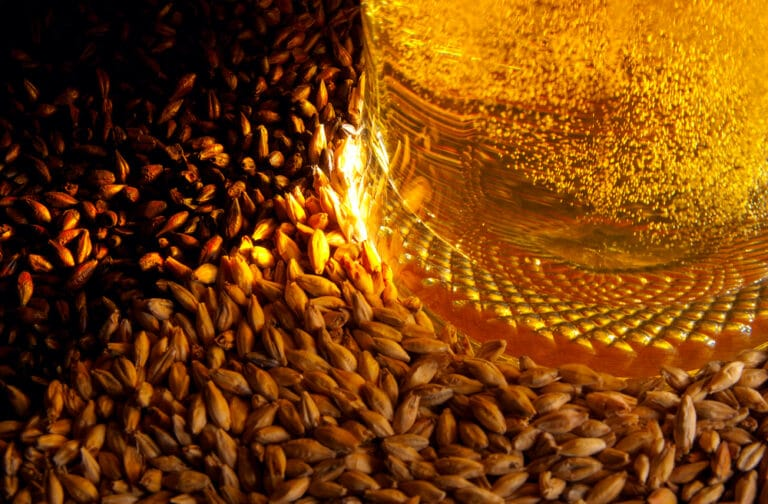 Malt Agribusiness Recruiting - Agricultural Appointments