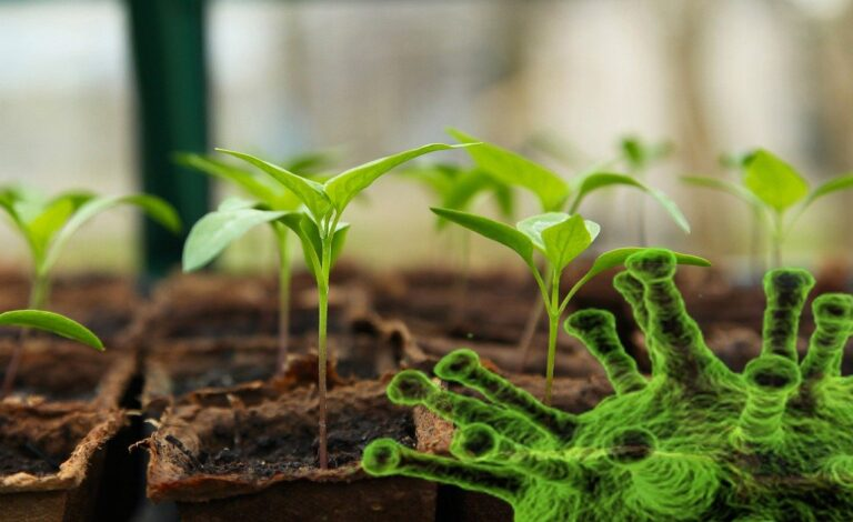 Self sufficiency - Agribusiness Recruiting - Agricultural Appointments