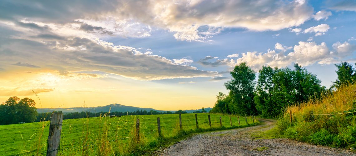 Farmland Sunset - Farm road - Agribusiness Recruiting - Agricultural Appointments